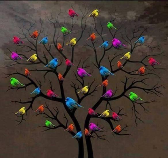 birdtree