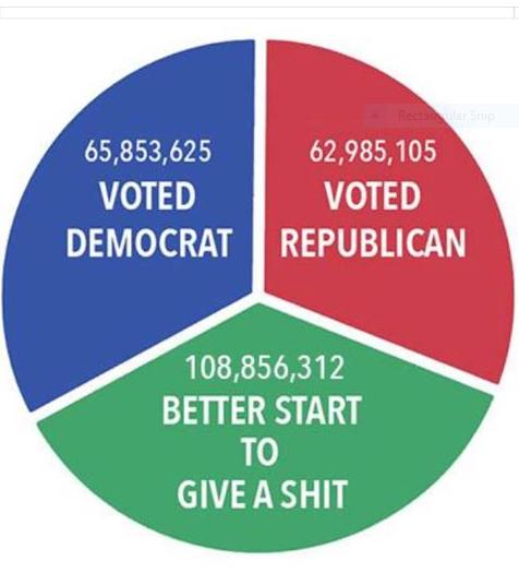 VotingPieChart